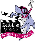 Bubble Vision Underwater Video homepage